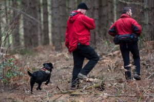 Dog Search